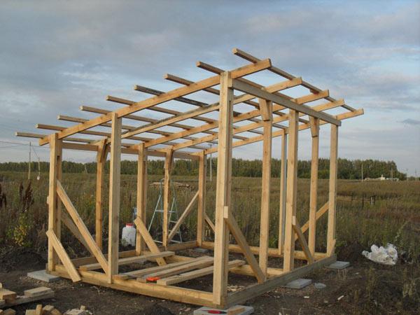 построить сарай с односкатной крышей грибы картошкой традиционный